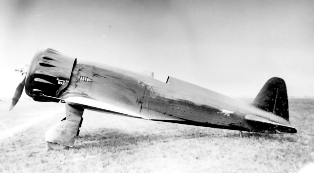 Wedell-Williams Model 45 side