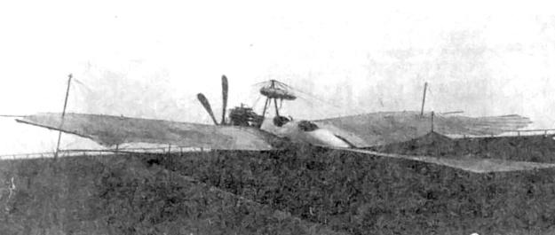 Rumpler Loutzkoy-Taube rear