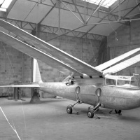 Riout 102T Alérion Ornithopter
