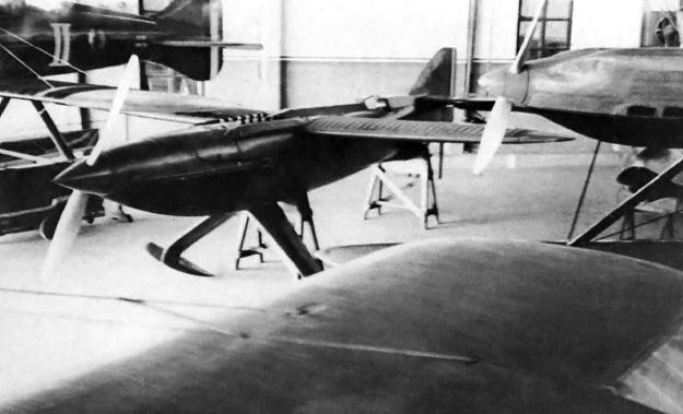 Piaggio_Pegna_P7_in_hangar